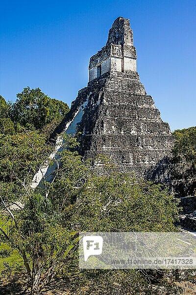Temple 1  Temple of the Great Jaguar  Mayan Ruin City  Tikal  Guatemala  Central America