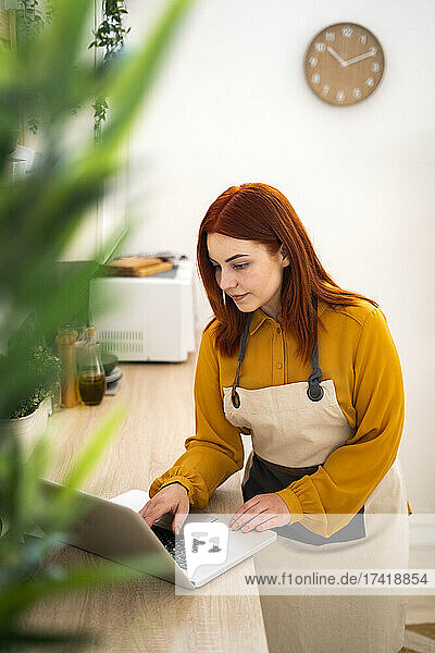 Redhead woman with apron using laptop while standing in kitchen at home