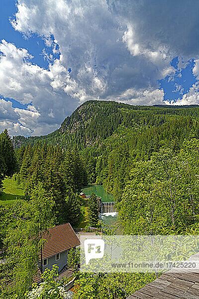 Landschaft  Taurachstausee