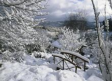 Fußgängerbrücke über einen gefrorenen Fluss während des Winters, Odenwald, Hessen, Deutschland