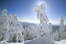 Deutschland, Bayerischer Wald, Großer Arber