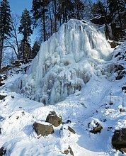 Bäume auf verschneiten Hill, Bad Harzburg, Deutschland