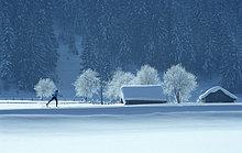 Person Skilanglauf in den Alpen