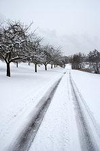 Reifen Tracks auf Straße im Schnee bedeckt Land Landschaft