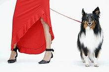 nebeneinander,neben,Seite an Seite,Frau,Hund,Leine