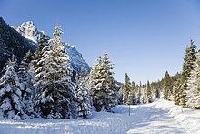 Deutschland, Bayern, Winterlandschaft im Hintergrund Wettersteingebirge