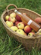 Korb ,Saft ,Apfel ,Flasche