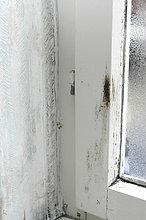 Schimmelpilz schimmel an wänden feuchte wände ungesundes raumklima
