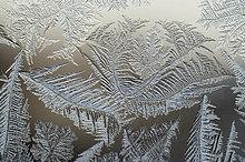 Eisblumen an Fensterglas