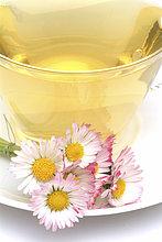 Tee aus Gänseblümchen, Massliebchen, Tausendschön, Bellis perennis, Gänseblümchentee