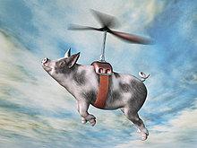 Composite fliegen Schwein in Harness befestigt, Propeller