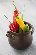 Rote, gelbe & grüne Chilischoten