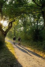 Zwei Mountainbikefahrer, Surrey, South East England, England, Großbritannien, Europa