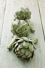 3,Artischocke,Cynara scolymus,Holz