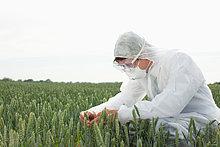 Wissenschaftler ,Pflanze ,Schutz ,Untersuchung ,Fahrgestell