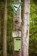 Monbachtal, Schwarzwald, Baden-Württemberg, Deutschland, Europa