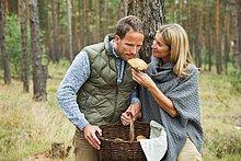 Wald ,Mittelpunkt ,Erwachsener ,Futter suchen, Nahrungssuche