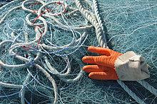 Hafen ,Frankreich ,arbeiten ,Handschuh ,Netz ,angeln ,Finistere
