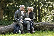 sitzend,Baum,verpacken,reifer Erwachsene,reife Erwachsene,Baumstamm,Stamm,essen,essend,isst,Mittagessen