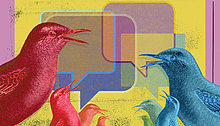 Vögel kommunizieren Online