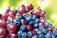 Blaubeeren und rote Trauben