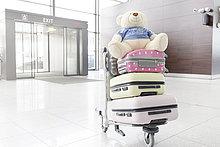 Koffer,Gepäck,Fuhrwerk,Teddy,Teddybär