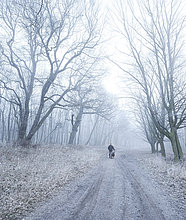 Wanderweg durch Laubwald im Winter bei Nebel und Frost, bei Freyburg, Sachsen-Anhalt, Deutschland, Europa