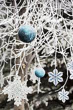 bedecken,Baum,hängen,Close-up,Weihnachten,Dekoration,Ast,Kälte,Alberta,Calgary