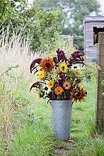Flower bouquet in bucket at garden allotment
