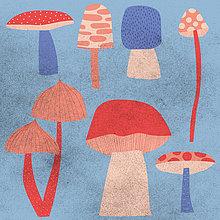 Sammlung von Pilzen