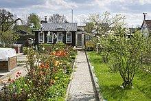 Allotment in spring, small garden, Methler district, Kamen, Ruhr district, North Rhine-Westphalia, Germany, Europe