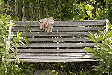 Gloves on wooden bench in garden