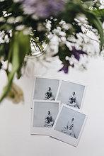 Blumen und Sofortbilder einer jungen Frau